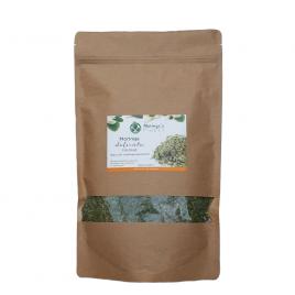 Moringa Delicata Fijn Blad - Moringa Oleifera