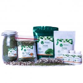 Moringa Detox Pakket Deluxe - Moringa Oleifera